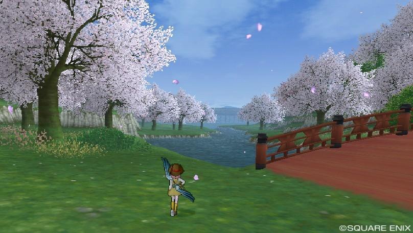 カミハルムイ領南の桜並木1