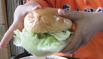 20130604_hamburger_00.jpg