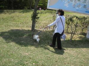 IMG_20120505_☆15