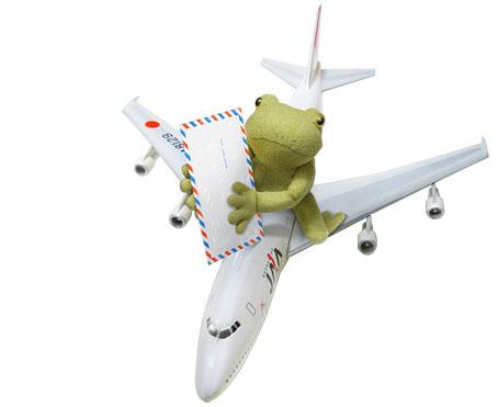 飛行機にカエル