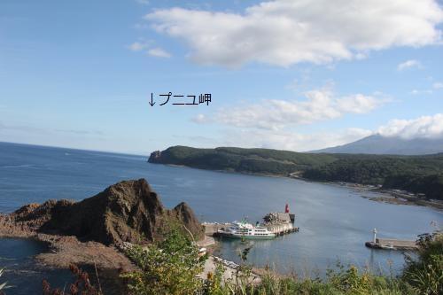 北海道91811
