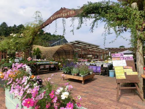 園芸店211021