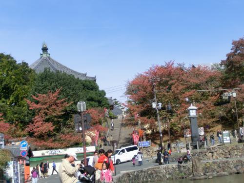 奈良公園2110412