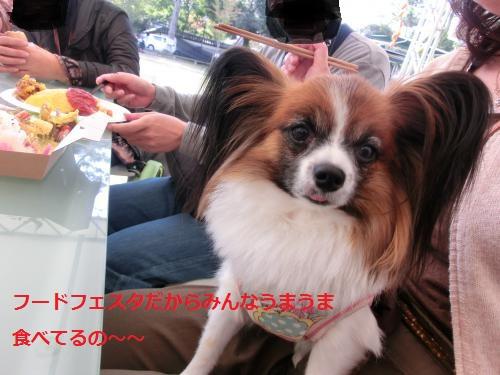 奈良公園2110411