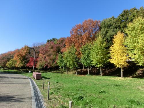 公園散歩211253
