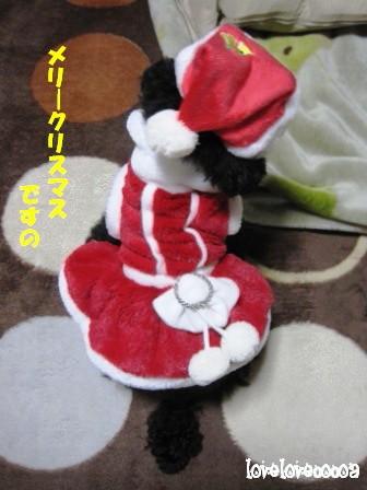 IMG_4958-cocoa_20121224232602.jpg