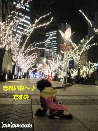 IMG_5740-cocoa_20121227195748.jpg