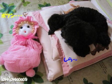 IMG_9468-cocoa_20120802195055.jpg