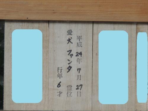 DSCN3937_convert_20120819002001.jpg