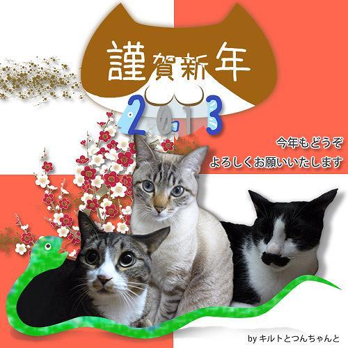 2013つんちゃん年賀