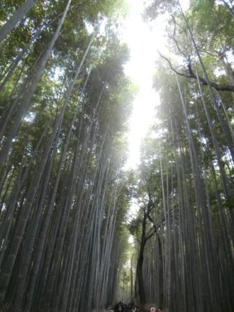 arashiyama6.jpg