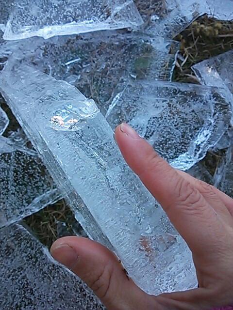 厚い氷2014