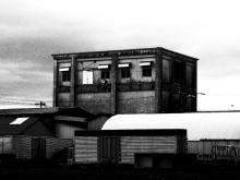 根室2013 (92)
