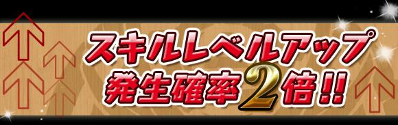 skill_20140213152533eda.jpg