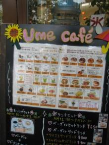 名古屋 うまうま便り    ~The spice every day~-UME CWFE