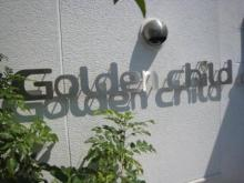 名古屋 うまうま便り    ~The spice every day~-GOLDEN CHILD