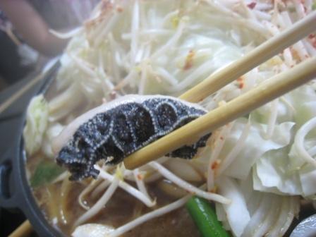 名古屋 うまうま便り    ~The spice every day~-梅田屋