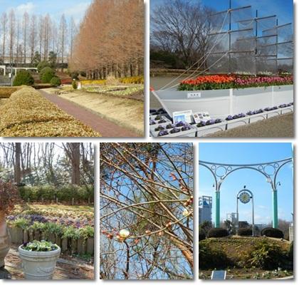 2013.2.2相模原公園