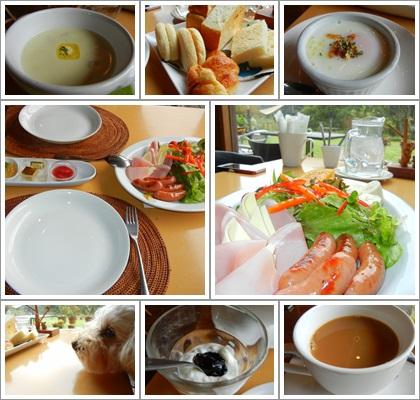 js hill GERDEN朝食