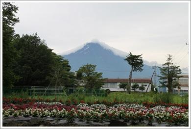 道志から見た富士山
