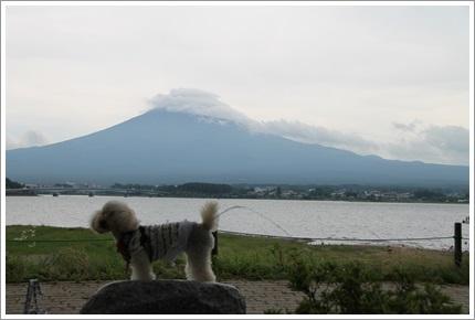 富士山とミラ