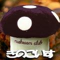 mashroom2