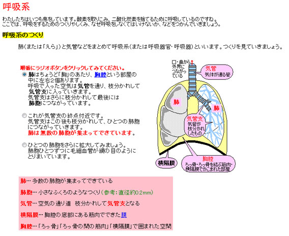 1_20121202160532.jpg