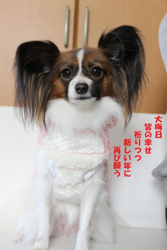 螟ァ譎ヲ譌・_convert_20131231142337