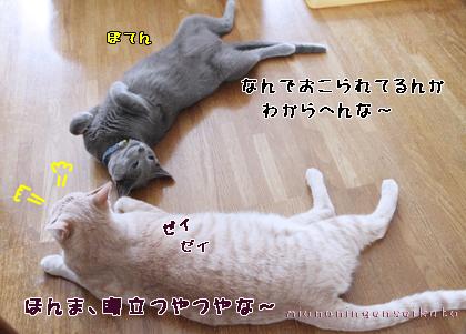 miu20120807a5.jpg