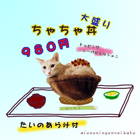 ちゃちゃ丼、おまち~