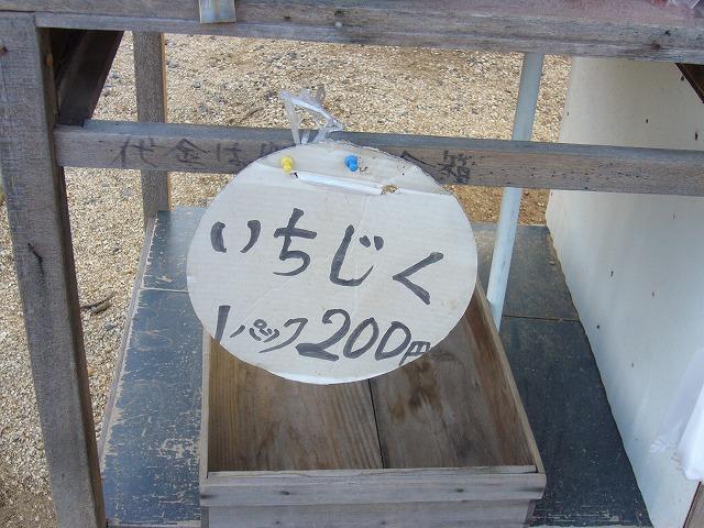 いちじくは売り切れ 26.11.29