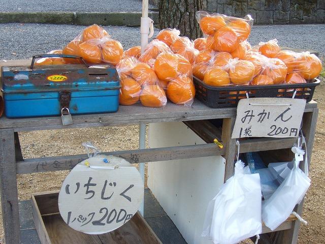 みかん・いちじく売り場 26.11.29