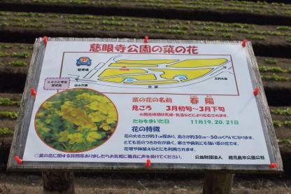 ふるさと考古歴史館.