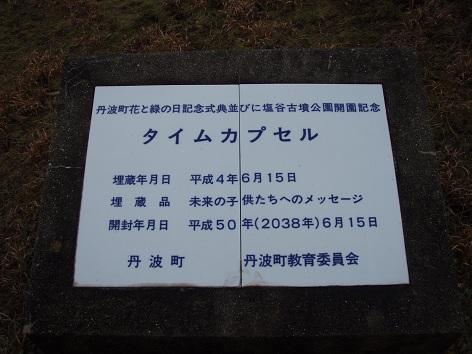 P3100084-4.jpg