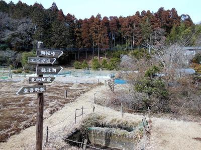 ☆DSCN1061