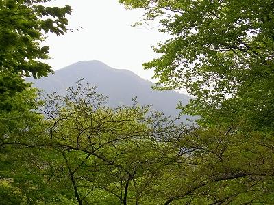 ☆R1043264武甲山