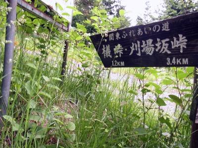 ☆R1043631ブナ峠
