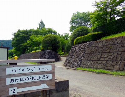 ☆DSCN0102