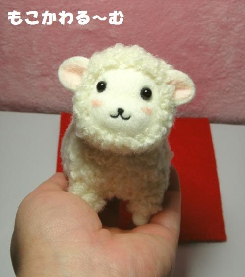 羊ちゃん大5