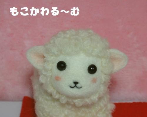 羊ちゃん小4