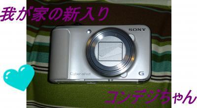 P1000815_convert_20120624214226.jpg