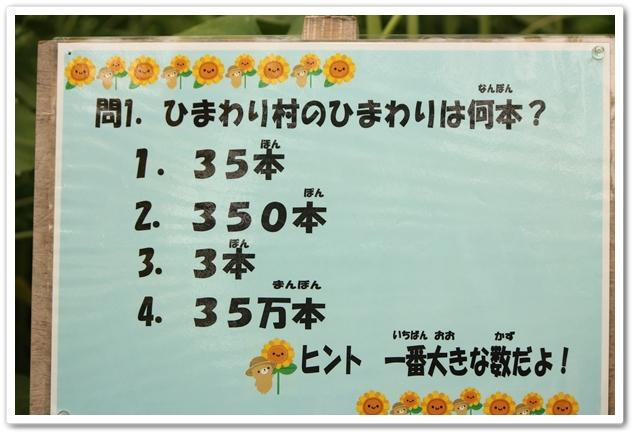 2012_07_29_0132-1.jpg