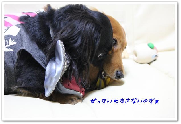 2012_10_25_1532-1.jpg