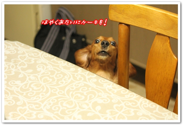 2013_01_13_2440-1.jpg