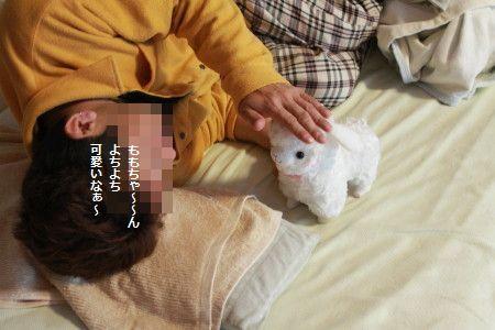 IMG_4637_1よちよちか2001230d33