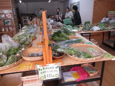 IMG_0054_1yasaii20013ss5.jpg