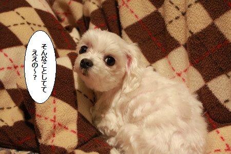 IMG_4097_1sonnnakoto201300201599.jpg
