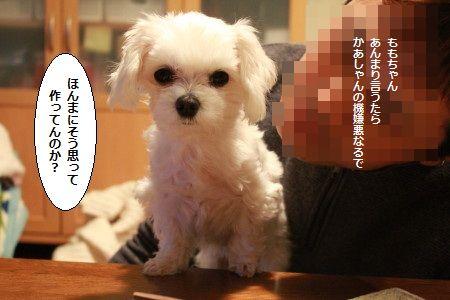 IMG_4169_1touusorekurai2001302217777.jpg
