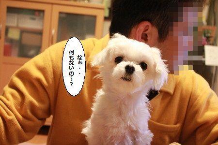 IMG_4665_1thayakutyoudai200130j0012.jpg
