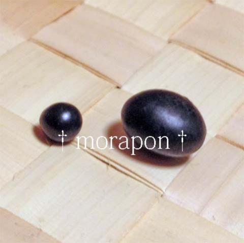141123 極小粒黒豆-2